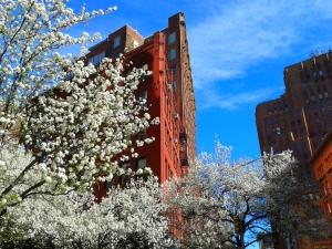 Spring NYC 2015